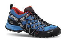 Salewa Men's Wildfire GTX davos/flame